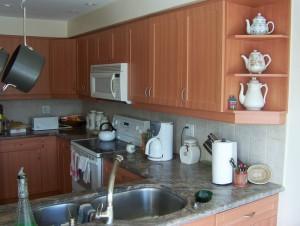 gabi_kitchen_2